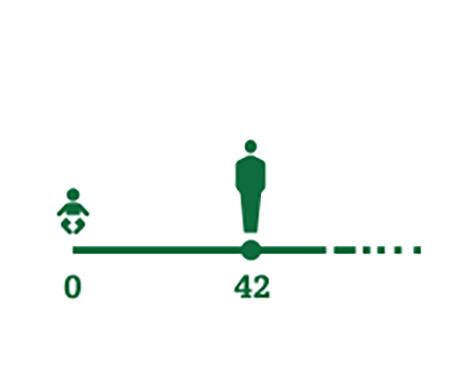 平均年齡的人的時間軸圖標 開始出現老花眼症狀(42歲)